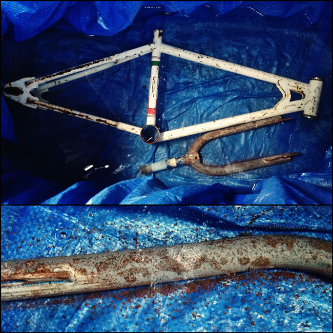 TBC Cobra Pro, Diamondback TK, frame in vinegar acid bath to remove rust